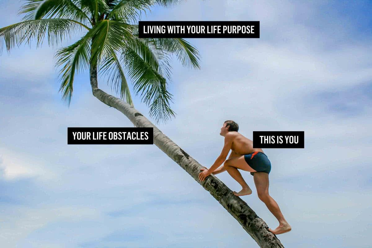 find out how to live according to your life purpose